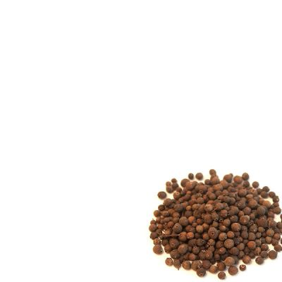 Mexican Whole Allspice 40g