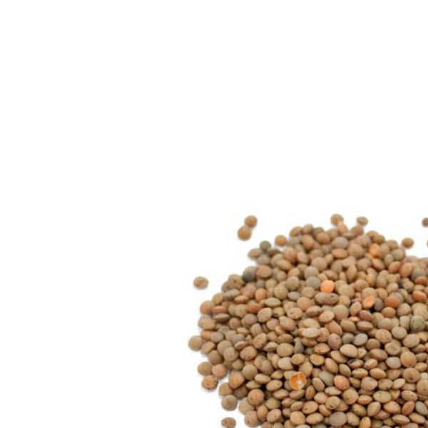 Canadian dried brown lentils
