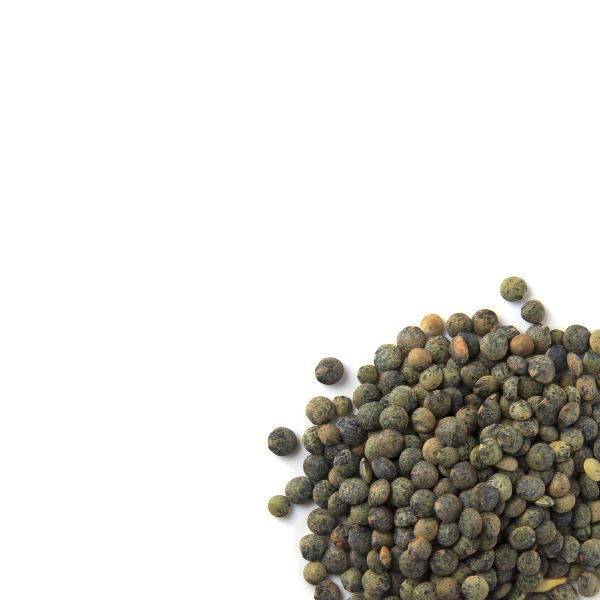 Canadian puy style green lentils